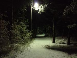 20121121-164203.jpg